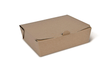 Brown Kraft Takeaway Boxes