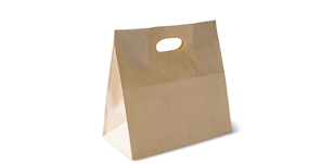 Die Cut Handle Paper Carry Bag