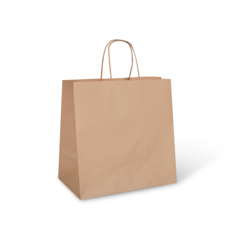 Budget Takeaway (305w+175x305h) Brown Twisted Handle Paper Bag