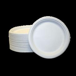 9.75inch Chinet Premium Round White Paper Plate