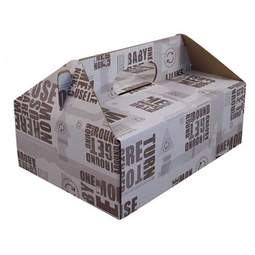 Carry Box 1 Enviro (240x169x85)