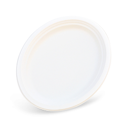 10x12.5 inch (251x318) Sugarcane Bagasse Oval Plate