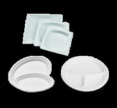 Eco-Sugarcane Bagasse Plates